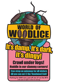 World of Woodlice