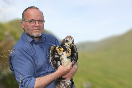 Andy Wightman MSP with 9-week old golden eagle Adam by Ruth Tingay).