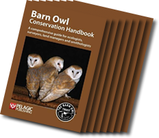 Barn Owl Conservation Handbook by the Barn Owl Trust