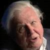 Sir David Attenborough talking with Chris Packham