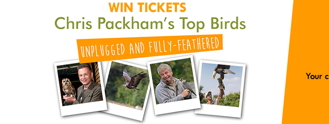 Hawk Conservancy Trust competition