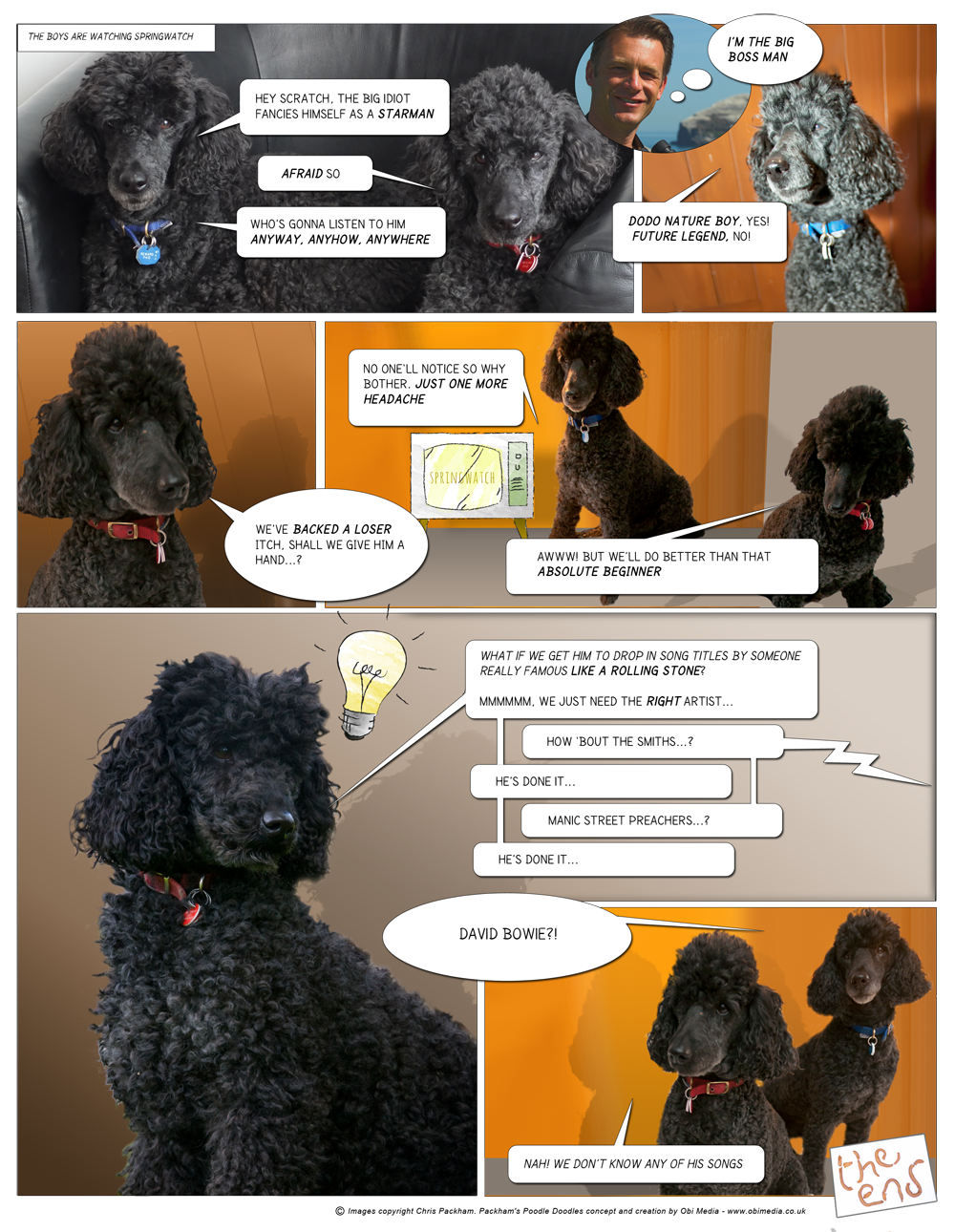 Poodle Doodles - Episode 1